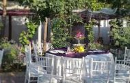 باغ تالار قصر پارسیان